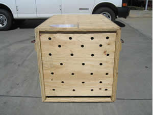 Restricted Breed Crate with Door Closed